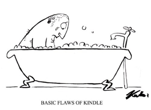 Basic-flaws-of-the-Kindle-cartoon